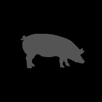 Rôti dans la côte de porc